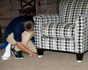 Green Clean cleaning furniture