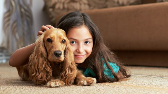 How to Remove Pet Dander from Carpet