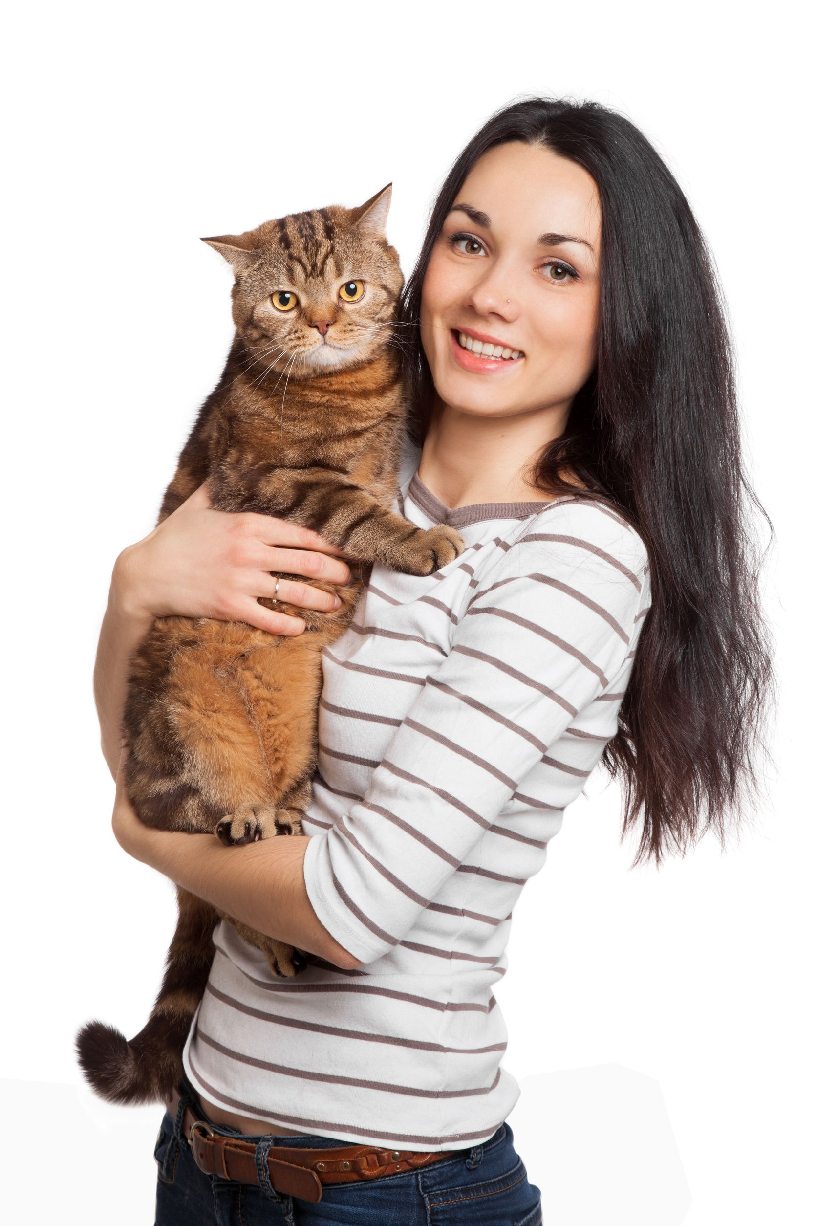 Carpet Cleaning Minneapolis: Why Cat Stink Sticks