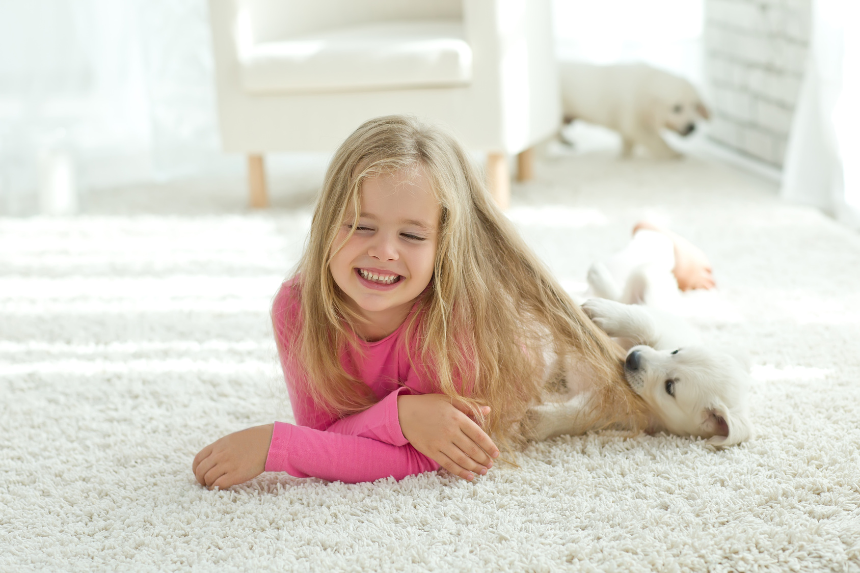 Children And Pets Do Not Mean The End Of Clean Carpet