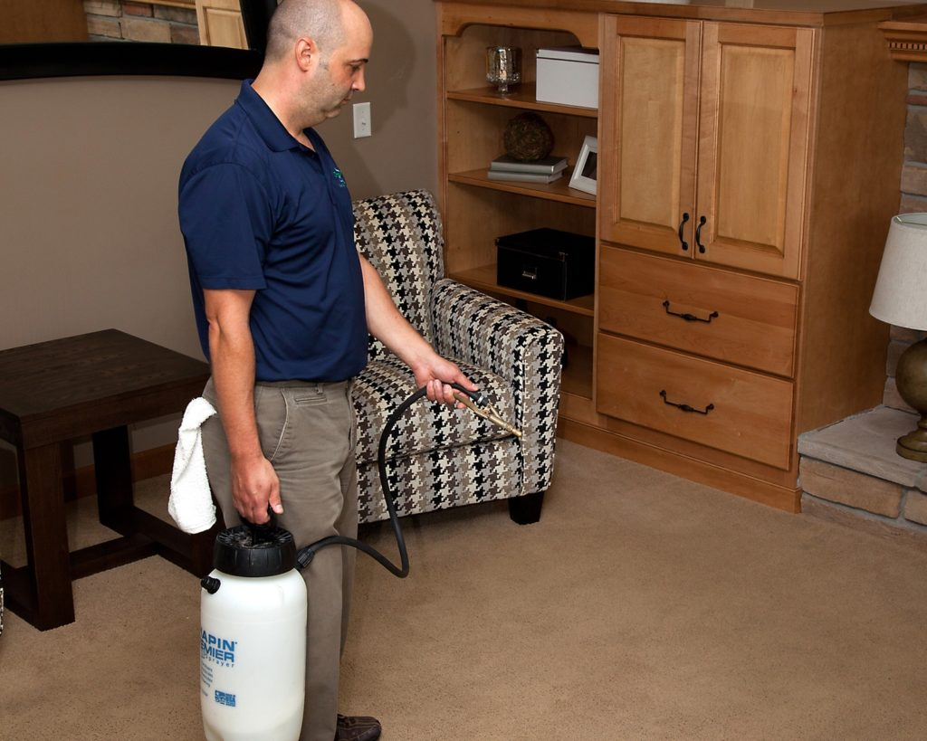 Minneapolis carpet cleaners and protectors