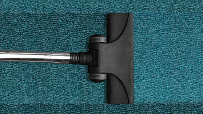 4 reasons you should have your carpet cleaned this Spring (reason #3 will surprise you)