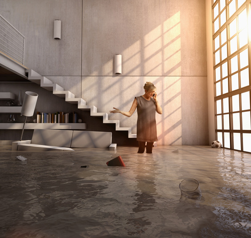 Water and Flood Damage Carpet Cleaning