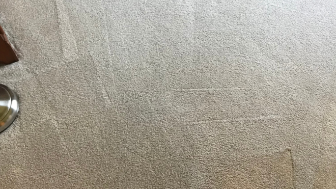 A few things you should know about personal carpet cleaners and professional cleaning services.